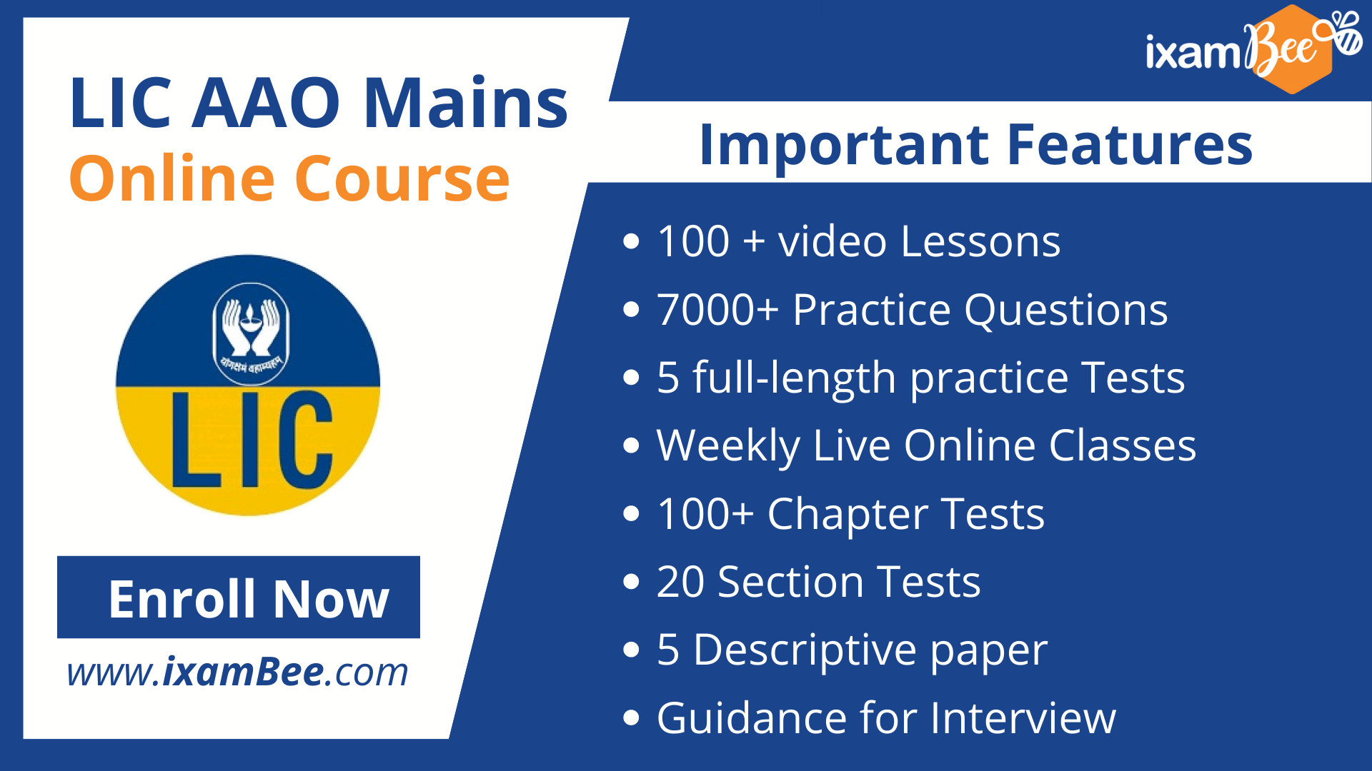 LIC AAO Mains Online Course